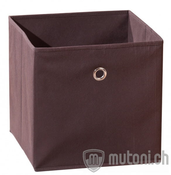 Box Wendy braun