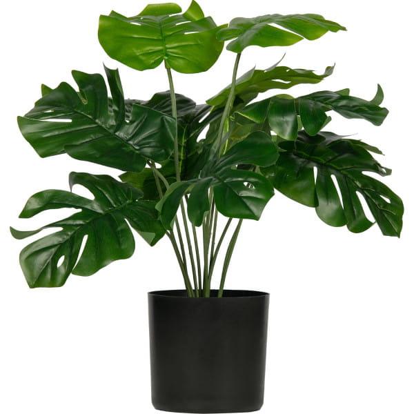 Künstliche Pflanze Montsera Grün 40cm