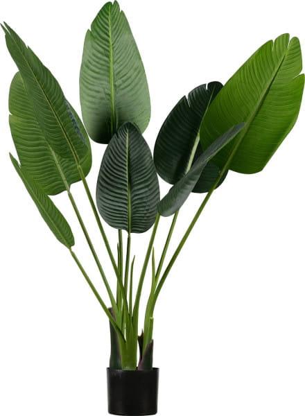 Deko Pflanze Strelitzia 108cm