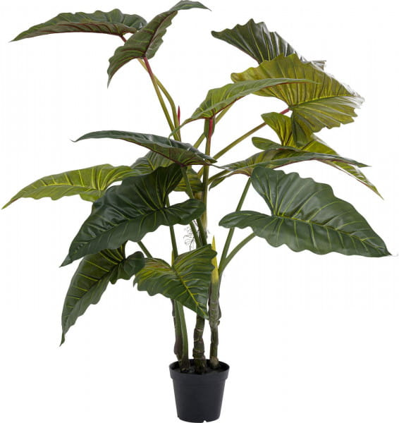 Deko Pflanze Taro 180cm